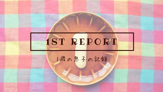 1st report